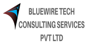 Bluewire Tech offers LPO service. Legal process outsourcing or LPO is